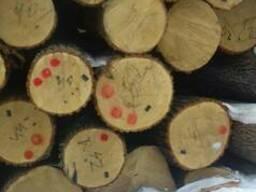 Заготовки дубовые