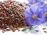Bohnen, Leinsamen, Linsen, Kichererbsen, Erbsen und andere landwirtschaftliche Produkte. - photo 3