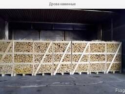 Dry firewood - фото 1