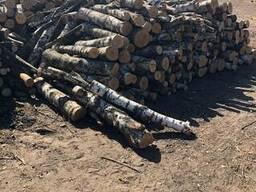Уголь древесный - photo 3
